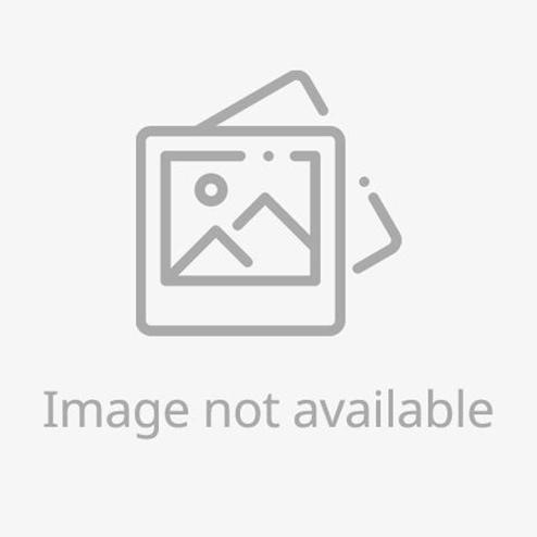 CPU M1